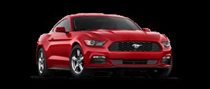 Travel Mustang